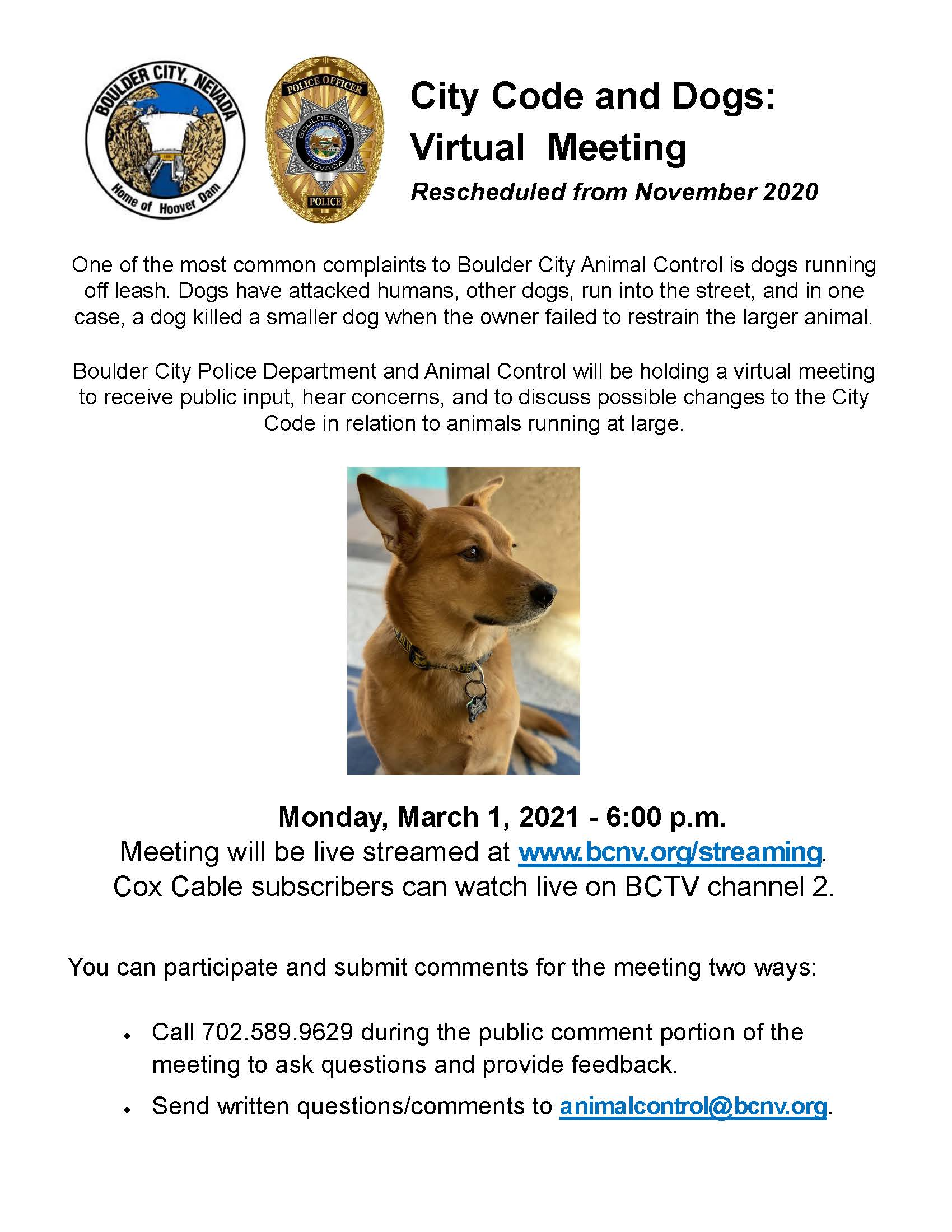 3.1.21 City Code and Dogs Virtual Meeting