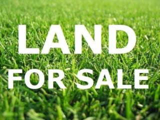 Land for Sale.jpg